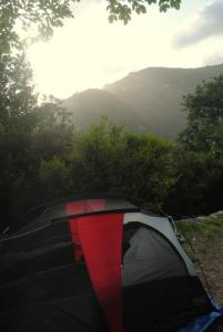 camping everywhere